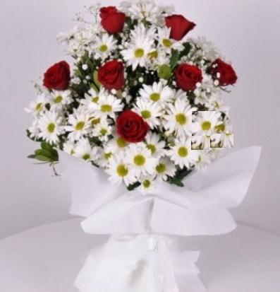 7 adet kırmızı gül ve papatyalar krizantem  Kayseri çiçek online çiçek gönderme sipariş