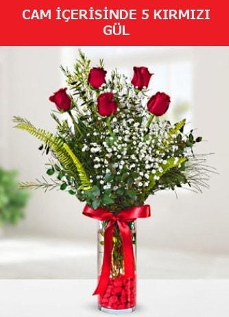 Cam içerisinde 5 adet kırmızı gül  Kayseri çiçek çiçek siparişi vermek