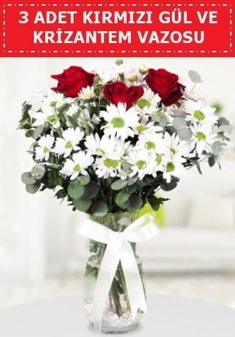 3 kırmızı gül ve camda krizantem çiçekleri  Kayseri çiçek ucuz çiçek gönder