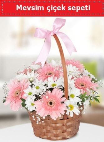 Mevsim kır çiçek sepeti  Kayseri çiçek çiçek siparişi sitesi
