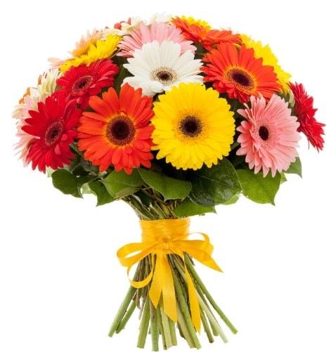 Gerbera demeti buketi  Kayseri çiçek çiçekçi mağazası