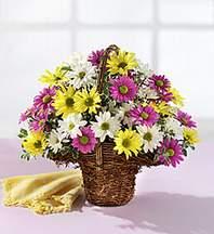 Kayseri çiçek cicek , cicekci  Mevsim çiçekleri sepeti